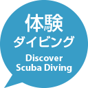 体験ダイビング - Discover Scuba Diving -